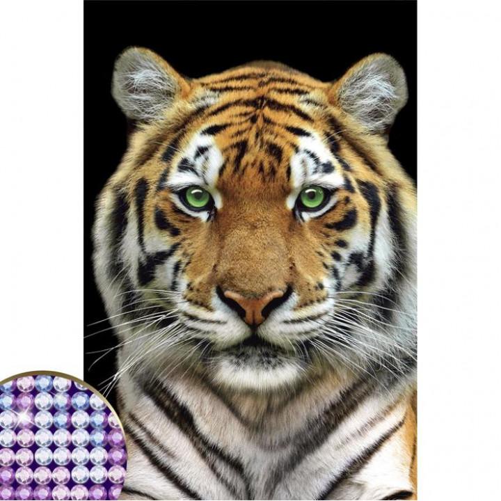 """Алмазная вышивка с частичным заполнением """"Тигр"""" 20*30 см"""